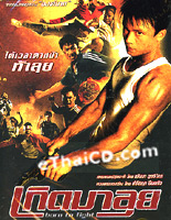 Born To Fight [ DVD - 5 ]