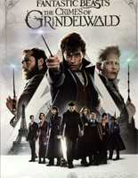 Fantastic Beasts: The Crimes of Grindelwald [ DVD ]