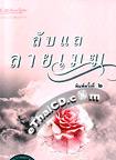 Thai Novel : Lub Lae Lai Mhek