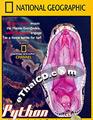 Python Invasion In The Everglades [ DVD ]
