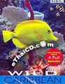 Documentary : BBC - Wild Caribbean [ DVD ]