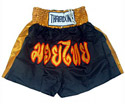 Muay Thai Shorts : Black - Gold