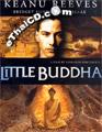 Little Buddha [ DVD ]