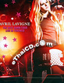 Concert DVD : Avril Lavigne - The Best Damn Tour (Live in Toronto)