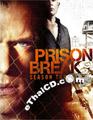 Prison Break : Season 3 [ DVD ]