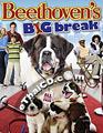 Beethoven's Big Break [ DVD ]