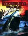 Malibu Shark Attack [ DVD ]