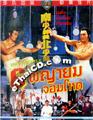 Invincible Shaolin [ DVD ]