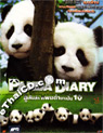 Panda Diary [ DVD ]