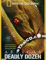 Africa\'s Deadly Dozen [ DVD ]