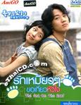 Korean serie : Cat On The Roof [ DVD ]