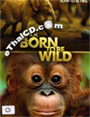 IMAX : Born To Be Wild [ DVD ]