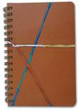 Diary :Teacher's Diary