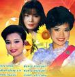 MP3 : Pleng Dunk Nai Ardeed - Vol.3