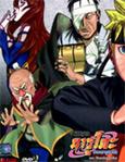 Naruto Shippuden : Episodes  417-441 [ DVD ]