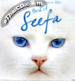 MP3 : GMM Grammy - Best of Seefa