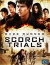 Maze Runner: The Scorch Trials [ DVD ]