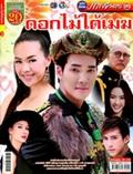 'Dok Mai Tai Mek' lakorn magazine (Parppayon Bunterng)