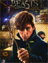 Fantastic Beasts and Where to Find Them [ DVD ]