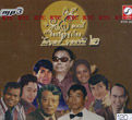 MP3 : 100th Year Loog Thung - Paiboon Budkhun Vol.2