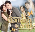 Thai TV series : Dokya Nai Payu [ DVD ]