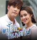 Thai TV series : Nhee Ruk Nai Krong Fai [ DVD ]