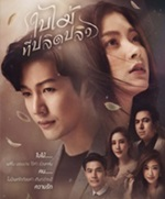 Thai TV series : Bai Mai Tee Plid Plew [ DVD ]