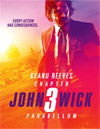 John Wick: Chapter 3 - Parabellum [ DVD ]
