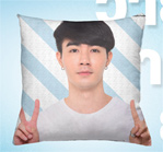 Why R U The Series : Pillow - Type D